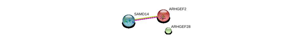 http://string-db.org/version_10/api/image/networkList?limit=0&targetmode=proteins&caller_identity=gene_cards&network_flavor=evidence&identifiers=9606.ENSP00000424474%0d%0a9606.ENSP00000354837%0d%0a9606.ENSP00000411459%0d%0a