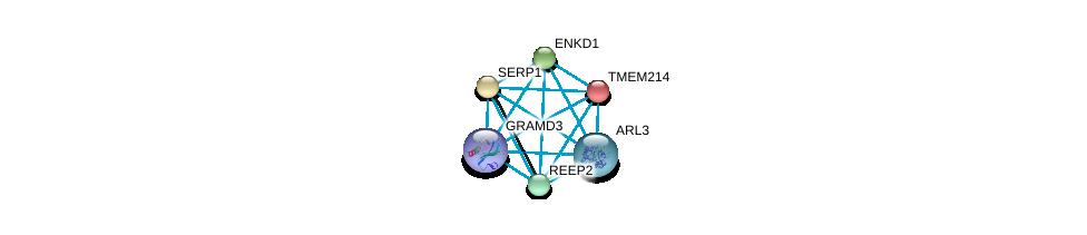 http://string-db.org/version_10/api/image/networkList?limit=0&targetmode=proteins&caller_identity=gene_cards&network_flavor=evidence&identifiers=9606.ENSP00000426120%0d%0a9606.ENSP00000238788%0d%0a9606.ENSP00000239944%0d%0a9606.ENSP00000243878%0d%0a9606.ENSP00000254901%0d%0a9606.ENSP00000260746%0d%0a