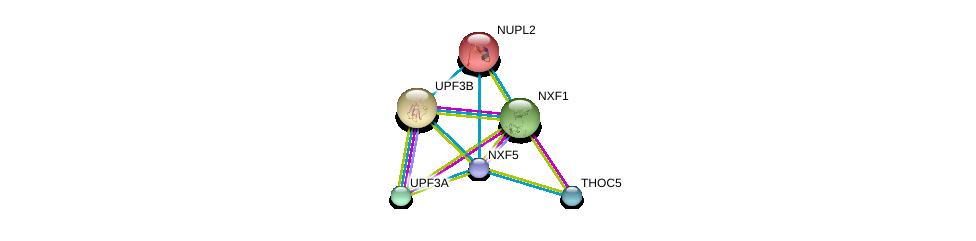 http://string-db.org/version_10/api/image/networkList?limit=0&targetmode=proteins&caller_identity=gene_cards&network_flavor=evidence&identifiers=9606.ENSP00000426978%0d%0a9606.ENSP00000294172%0d%0a9606.ENSP00000276201%0d%0a9606.ENSP00000364448%0d%0a9606.ENSP00000380969%0d%0a9606.ENSP00000258742%0d%0a