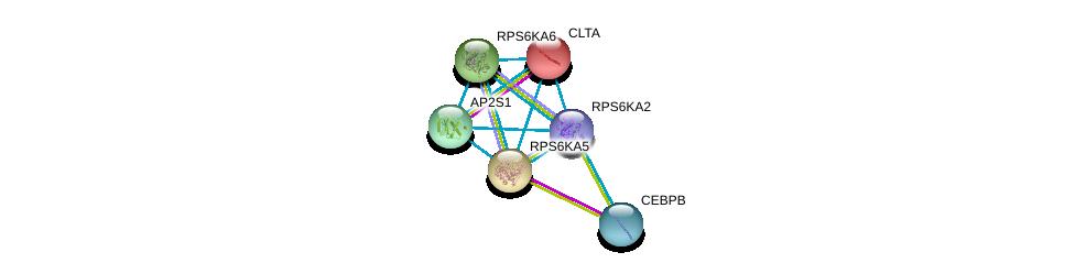 http://string-db.org/version_10/api/image/networkList?limit=0&targetmode=proteins&caller_identity=gene_cards&network_flavor=evidence&identifiers=9606.ENSP00000427015%0d%0a9606.ENSP00000242285%0d%0a9606.ENSP00000305422%0d%0a9606.ENSP00000261991%0d%0a9606.ENSP00000262752%0d%0a9606.ENSP00000263270%0d%0a