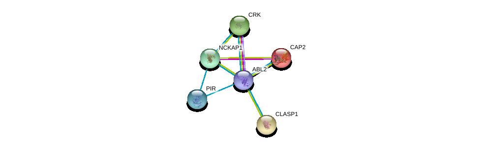 http://string-db.org/version_10/api/image/networkList?limit=0&targetmode=proteins&caller_identity=gene_cards&network_flavor=evidence&identifiers=9606.ENSP00000427562%0d%0a9606.ENSP00000300574%0d%0a9606.ENSP00000354251%0d%0a9606.ENSP00000229922%0d%0a9606.ENSP00000263710%0d%0a9606.ENSP00000369785%0d%0a