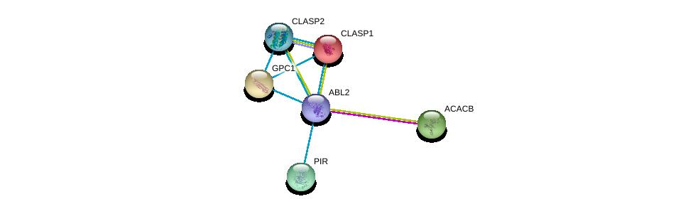 http://string-db.org/version_10/api/image/networkList?limit=0&targetmode=proteins&caller_identity=gene_cards&network_flavor=evidence&identifiers=9606.ENSP00000427562%0d%0a9606.ENSP00000419974%0d%0a9606.ENSP00000263710%0d%0a9606.ENSP00000369785%0d%0a9606.ENSP00000264039%0d%0a9606.ENSP00000341044%0d%0a