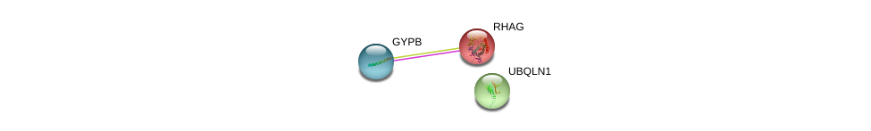 http://string-db.org/version_10/api/image/networkList?limit=0&targetmode=proteins&caller_identity=gene_cards&network_flavor=evidence&identifiers=9606.ENSP00000427690%0d%0a9606.ENSP00000360217%0d%0a9606.ENSP00000365576%0d%0a