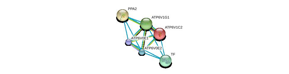 http://string-db.org/version_10/api/image/networkList?limit=0&targetmode=proteins&caller_identity=gene_cards&network_flavor=evidence&identifiers=9606.ENSP00000427941%0d%0a9606.ENSP00000363162%0d%0a9606.ENSP00000411672%0d%0a9606.ENSP00000272238%0d%0a9606.ENSP00000385834%0d%0a9606.ENSP00000343885%0d%0a