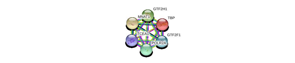 http://string-db.org/version_10/api/image/networkList?limit=0&targetmode=proteins&caller_identity=gene_cards&network_flavor=evidence&identifiers=9606.ENSP00000428426%0d%0a9606.ENSP00000314949%0d%0a9606.ENSP00000230354%0d%0a9606.ENSP00000377969%0d%0a9606.ENSP00000265963%0d%0a9606.ENSP00000261245%0d%0a