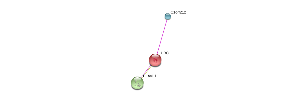 http://string-db.org/version_10/api/image/networkList?limit=0&targetmode=proteins&caller_identity=gene_cards&network_flavor=evidence&identifiers=9606.ENSP00000428541%0d%0a9606.ENSP00000344818%0d%0a9606.ENSP00000385269%0d%0a