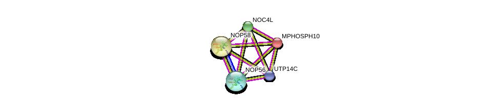 http://string-db.org/version_10/api/image/networkList?limit=0&targetmode=proteins&caller_identity=gene_cards&network_flavor=evidence&identifiers=9606.ENSP00000428619%0d%0a9606.ENSP00000244230%0d%0a9606.ENSP00000370589%0d%0a9606.ENSP00000370589%0d%0a9606.ENSP00000264279%0d%0a9606.ENSP00000328854%0d%0a