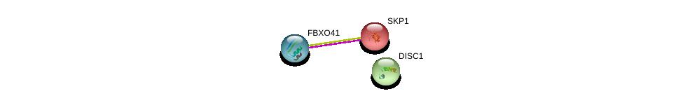http://string-db.org/version_10/api/image/networkList?limit=0&targetmode=proteins&caller_identity=gene_cards&network_flavor=evidence&identifiers=9606.ENSP00000428646%0d%0a9606.ENSP00000231487%0d%0a9606.ENSP00000355593%0d%0a