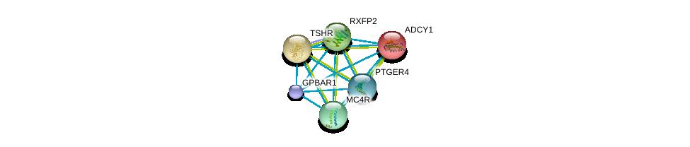 http://string-db.org/version_10/api/image/networkList?limit=0&targetmode=proteins&caller_identity=gene_cards&network_flavor=evidence&identifiers=9606.ENSP00000428824%0d%0a9606.ENSP00000297323%0d%0a9606.ENSP00000298171%0d%0a9606.ENSP00000298386%0d%0a9606.ENSP00000299766%0d%0a9606.ENSP00000302846%0d%0a