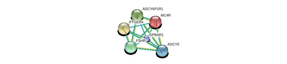 http://string-db.org/version_10/api/image/networkList?limit=0&targetmode=proteins&caller_identity=gene_cards&network_flavor=evidence&identifiers=9606.ENSP00000428824%0d%0a9606.ENSP00000419361%0d%0a9606.ENSP00000299766%0d%0a9606.ENSP00000384708%0d%0a9606.ENSP00000379514%0d%0a9606.ENSP00000302846%0d%0a