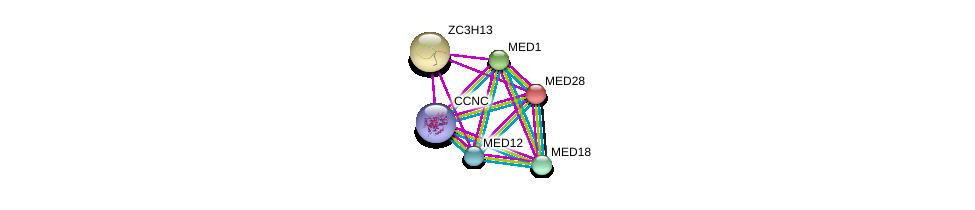 http://string-db.org/version_10/api/image/networkList?limit=0&targetmode=proteins&caller_identity=gene_cards&network_flavor=evidence&identifiers=9606.ENSP00000428982%0d%0a9606.ENSP00000282007%0d%0a9606.ENSP00000300651%0d%0a9606.ENSP00000237380%0d%0a9606.ENSP00000362948%0d%0a9606.ENSP00000363193%0d%0a
