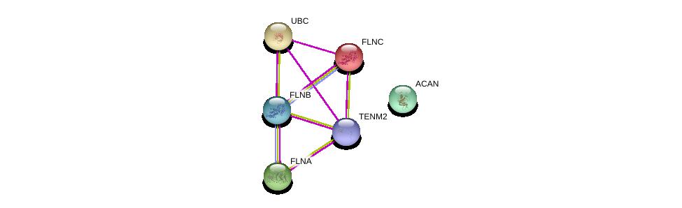 http://string-db.org/version_10/api/image/networkList?limit=0&targetmode=proteins&caller_identity=gene_cards&network_flavor=evidence&identifiers=9606.ENSP00000429430%0d%0a9606.ENSP00000344818%0d%0a9606.ENSP00000327145%0d%0a9606.ENSP00000420213%0d%0a9606.ENSP00000358866%0d%0a9606.ENSP00000387356%0d%0a