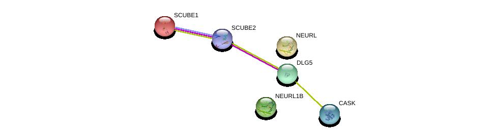 http://string-db.org/version_10/api/image/networkList?limit=0&targetmode=proteins&caller_identity=gene_cards&network_flavor=evidence&identifiers=9606.ENSP00000429969%0d%0a9606.ENSP00000354080%0d%0a9606.ENSP00000358815%0d%0a9606.ENSP00000358795%0d%0a9606.ENSP00000367408%0d%0a9606.ENSP00000361467%0d%0a