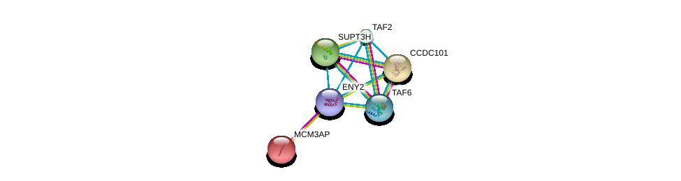 http://string-db.org/version_10/api/image/networkList?limit=0&targetmode=proteins&caller_identity=gene_cards&network_flavor=evidence&identifiers=9606.ENSP00000429986%0d%0a9606.ENSP00000291688%0d%0a9606.ENSP00000316114%0d%0a9606.ENSP00000399982%0d%0a9606.ENSP00000360515%0d%0a9606.ENSP00000367406%0d%0a