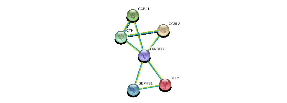 http://string-db.org/version_10/api/image/networkList?limit=0&targetmode=proteins&caller_identity=gene_cards&network_flavor=evidence&identifiers=9606.ENSP00000430031%0d%0a9606.ENSP00000254663%0d%0a9606.ENSP00000260508%0d%0a9606.ENSP00000302227%0d%0a9606.ENSP00000359976%0d%0a9606.ENSP00000367893%0d%0a