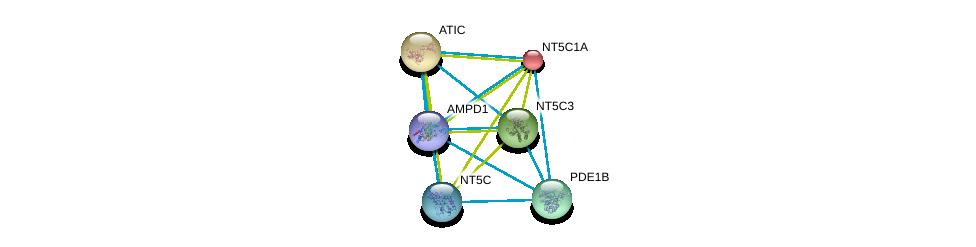 http://string-db.org/version_10/api/image/networkList?limit=0&targetmode=proteins&caller_identity=gene_cards&network_flavor=evidence&identifiers=9606.ENSP00000430075%0d%0a9606.ENSP00000235628%0d%0a9606.ENSP00000236959%0d%0a9606.ENSP00000242210%0d%0a9606.ENSP00000243052%0d%0a9606.ENSP00000245552%0d%0a