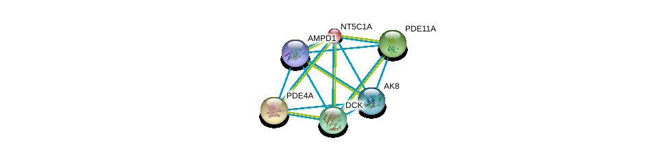 http://string-db.org/version_10/api/image/networkList?limit=0&targetmode=proteins&caller_identity=gene_cards&network_flavor=evidence&identifiers=9606.ENSP00000430075%0d%0a9606.ENSP00000235628%0d%0a9606.ENSP00000270474%0d%0a9606.ENSP00000286063%0d%0a9606.ENSP00000286648%0d%0a9606.ENSP00000298545%0d%0a
