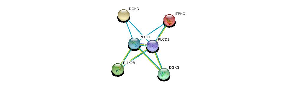 http://string-db.org/version_10/api/image/networkList?limit=0&targetmode=proteins&caller_identity=gene_cards&network_flavor=evidence&identifiers=9606.ENSP00000430344%0d%0a9606.ENSP00000263370%0d%0a9606.ENSP00000264057%0d%0a9606.ENSP00000264864%0d%0a9606.ENSP00000265022%0d%0a9606.ENSP00000266505%0d%0a