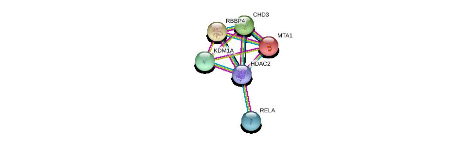http://string-db.org/version_10/api/image/networkList?limit=0&targetmode=proteins&caller_identity=gene_cards&network_flavor=evidence&identifiers=9606.ENSP00000430432%0d%0a9606.ENSP00000384273%0d%0a9606.ENSP00000369716%0d%0a9606.ENSP00000383042%0d%0a9606.ENSP00000333633%0d%0a9606.ENSP00000362592%0d%0a