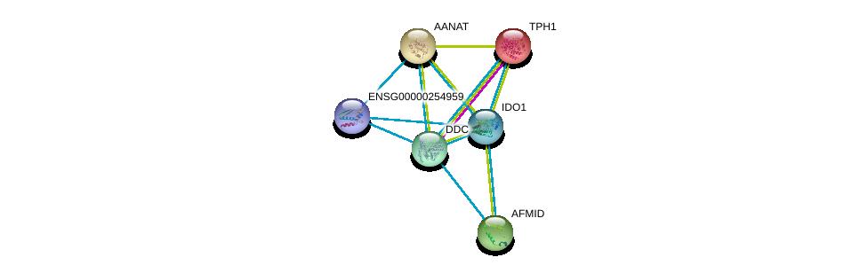 http://string-db.org/version_10/api/image/networkList?limit=0&targetmode=proteins&caller_identity=gene_cards&network_flavor=evidence&identifiers=9606.ENSP00000430505%0d%0a9606.ENSP00000328938%0d%0a9606.ENSP00000250615%0d%0a9606.ENSP00000456039%0d%0a9606.ENSP00000350616%0d%0a9606.ENSP00000250018%0d%0a