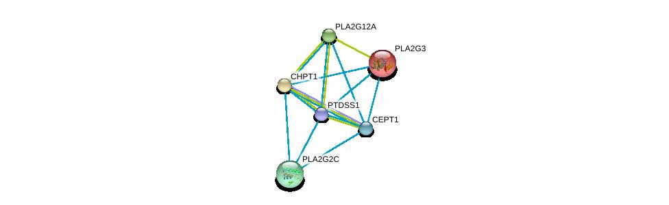 http://string-db.org/version_10/api/image/networkList?limit=0&targetmode=proteins&caller_identity=gene_cards&network_flavor=evidence&identifiers=9606.ENSP00000430548%0d%0a9606.ENSP00000349696%0d%0a9606.ENSP00000215885%0d%0a9606.ENSP00000229266%0d%0a9606.ENSP00000243501%0d%0a9606.ENSP00000247992%0d%0a