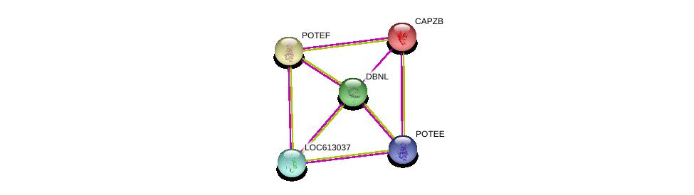 http://string-db.org/version_10/api/image/networkList?limit=0&targetmode=proteins&caller_identity=gene_cards&network_flavor=evidence&identifiers=9606.ENSP00000430633%0d%0a9606.ENSP00000264202%0d%0a9606.ENSP00000417653%0d%0a9606.ENSP00000417653%0d%0a9606.ENSP00000439189%0d%0a9606.ENSP00000350052%0d%0a