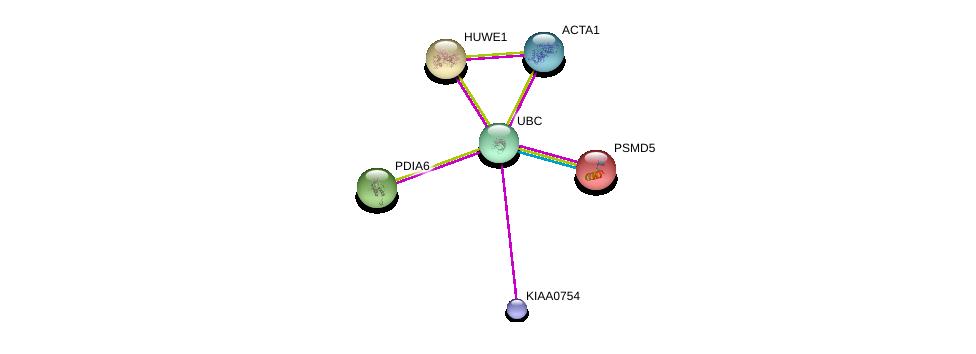 http://string-db.org/version_10/api/image/networkList?limit=0&targetmode=proteins&caller_identity=gene_cards&network_flavor=evidence&identifiers=9606.ENSP00000431179%0d%0a9606.ENSP00000344818%0d%0a9606.ENSP00000272227%0d%0a9606.ENSP00000210313%0d%0a9606.ENSP00000262854%0d%0a9606.ENSP00000355645%0d%0a