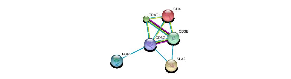 http://string-db.org/version_10/api/image/networkList?limit=0&targetmode=proteins&caller_identity=gene_cards&network_flavor=evidence&identifiers=9606.ENSP00000431445%0d%0a9606.ENSP00000354566%0d%0a9606.ENSP00000262866%0d%0a9606.ENSP00000295756%0d%0a9606.ENSP00000363115%0d%0a9606.ENSP00000011653%0d%0a