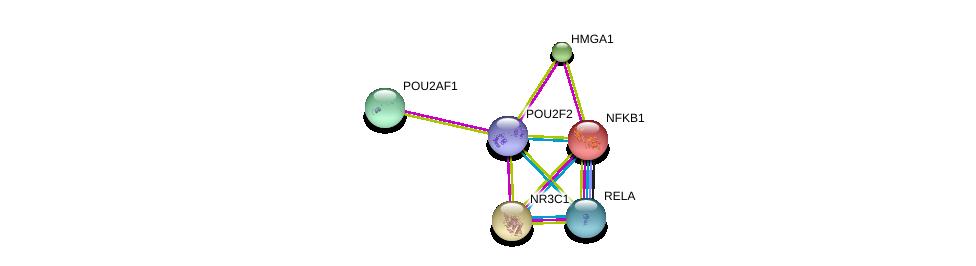 http://string-db.org/version_10/api/image/networkList?limit=0&targetmode=proteins&caller_identity=gene_cards&network_flavor=evidence&identifiers=9606.ENSP00000431603%0d%0a9606.ENSP00000231509%0d%0a9606.ENSP00000226574%0d%0a9606.ENSP00000384273%0d%0a9606.ENSP00000308227%0d%0a9606.ENSP00000376786%0d%0a