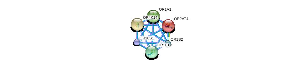 http://string-db.org/version_10/api/image/networkList?limit=0&targetmode=proteins&caller_identity=gene_cards&network_flavor=evidence&identifiers=9606.ENSP00000431914%0d%0a9606.ENSP00000305011%0d%0a9606.ENSP00000304846%0d%0a9606.ENSP00000305207%0d%0a9606.ENSP00000305424%0d%0a9606.ENSP00000305469%0d%0a
