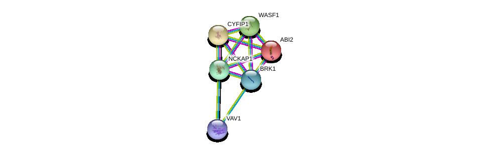 http://string-db.org/version_10/api/image/networkList?limit=0&targetmode=proteins&caller_identity=gene_cards&network_flavor=evidence&identifiers=9606.ENSP00000432472%0d%0a9606.ENSP00000352425%0d%0a9606.ENSP00000354251%0d%0a9606.ENSP00000324549%0d%0a9606.ENSP00000261017%0d%0a9606.ENSP00000472929%0d%0a