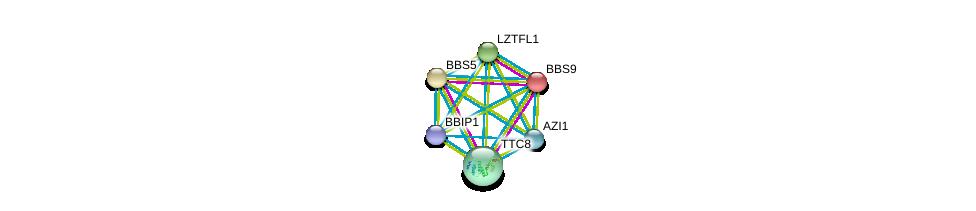 http://string-db.org/version_10/api/image/networkList?limit=0&targetmode=proteins&caller_identity=gene_cards&network_flavor=evidence&identifiers=9606.ENSP00000433157%0d%0a9606.ENSP00000242067%0d%0a9606.ENSP00000295240%0d%0a9606.ENSP00000296135%0d%0a9606.ENSP00000370031%0d%0a9606.ENSP00000393583%0d%0a