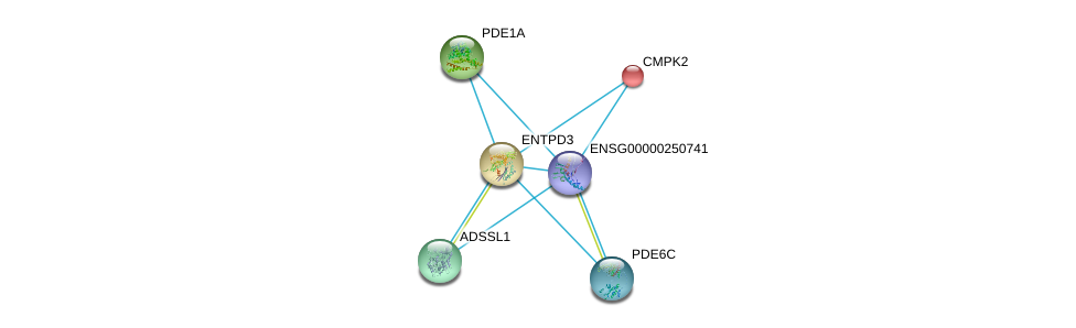http://string-db.org/version_10/api/image/networkList?limit=0&targetmode=proteins&caller_identity=gene_cards&network_flavor=evidence&identifiers=9606.ENSP00000433415%0d%0a9606.ENSP00000256722%0d%0a9606.ENSP00000301825%0d%0a9606.ENSP00000331574%0d%0a9606.ENSP00000360502%0d%0a9606.ENSP00000333019%0d%0a