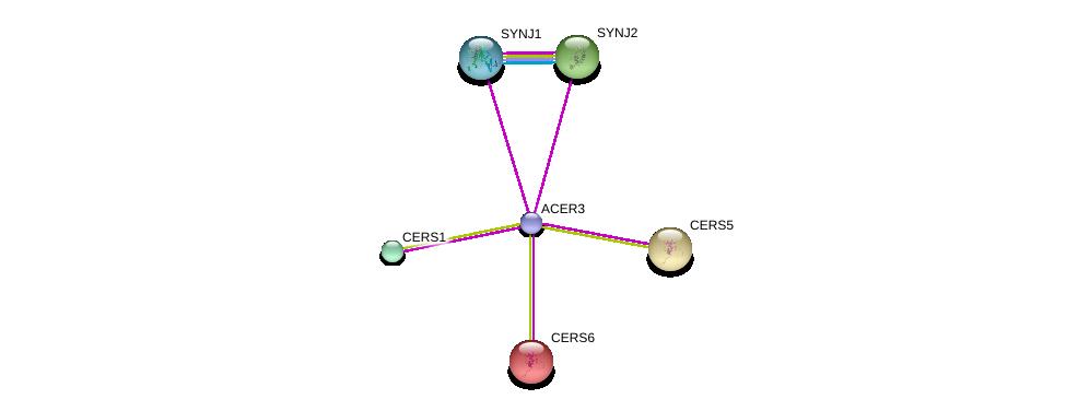 http://string-db.org/version_10/api/image/networkList?limit=0&targetmode=proteins&caller_identity=gene_cards&network_flavor=evidence&identifiers=9606.ENSP00000434480%0d%0a9606.ENSP00000347792%0d%0a9606.ENSP00000409667%0d%0a9606.ENSP00000306579%0d%0a9606.ENSP00000325485%0d%0a9606.ENSP00000402697%0d%0a