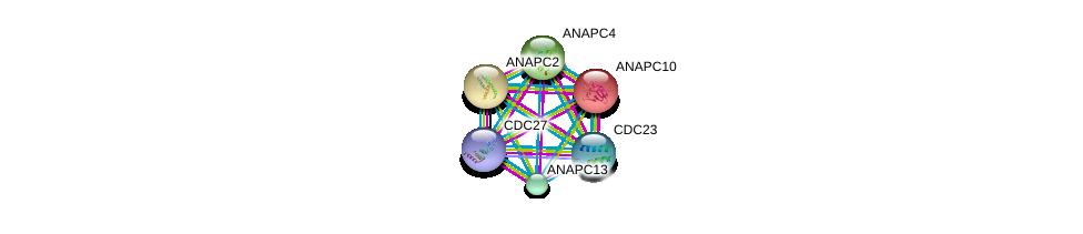 http://string-db.org/version_10/api/image/networkList?limit=0&targetmode=proteins&caller_identity=gene_cards&network_flavor=evidence&identifiers=9606.ENSP00000434614%0d%0a9606.ENSP00000314004%0d%0a9606.ENSP00000378350%0d%0a9606.ENSP00000310071%0d%0a9606.ENSP00000318775%0d%0a9606.ENSP00000346987%0d%0a