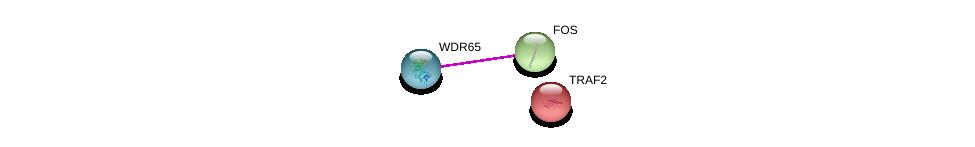 http://string-db.org/version_10/api/image/networkList?limit=0&targetmode=proteins&caller_identity=gene_cards&network_flavor=evidence&identifiers=9606.ENSP00000435310%0d%0a9606.ENSP00000306245%0d%0a9606.ENSP00000247668%0d%0a