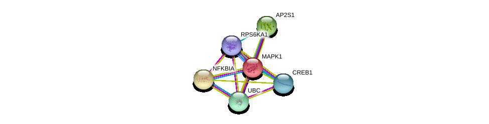 http://string-db.org/version_10/api/image/networkList?limit=0&targetmode=proteins&caller_identity=gene_cards&network_flavor=evidence&identifiers=9606.ENSP00000435412%0d%0a9606.ENSP00000215832%0d%0a9606.ENSP00000216797%0d%0a9606.ENSP00000344818%0d%0a9606.ENSP00000387699%0d%0a9606.ENSP00000263270%0d%0a