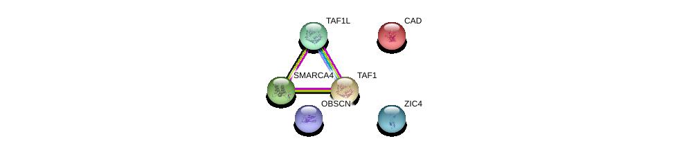 http://string-db.org/version_10/api/image/networkList?limit=0&targetmode=proteins&caller_identity=gene_cards&network_flavor=evidence&identifiers=9606.ENSP00000435509%0d%0a9606.ENSP00000264705%0d%0a9606.ENSP00000455507%0d%0a9606.ENSP00000418379%0d%0a9606.ENSP00000276072%0d%0a9606.ENSP00000350720%0d%0a