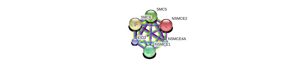 http://string-db.org/version_10/api/image/networkList?limit=0&targetmode=proteins&caller_identity=gene_cards&network_flavor=evidence&identifiers=9606.ENSP00000435619%0d%0a9606.ENSP00000355077%0d%0a9606.ENSP00000323439%0d%0a9606.ENSP00000358019%0d%0a9606.ENSP00000354957%0d%0a9606.ENSP00000287437%0d%0a