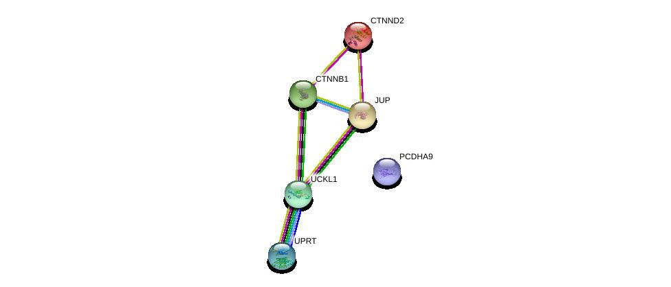 http://string-db.org/version_10/api/image/networkList?limit=0&targetmode=proteins&caller_identity=gene_cards&network_flavor=evidence&identifiers=9606.ENSP00000436042%0d%0a9606.ENSP00000311113%0d%0a9606.ENSP00000362481%0d%0a9606.ENSP00000346155%0d%0a9606.ENSP00000344456%0d%0a9606.ENSP00000307134%0d%0a