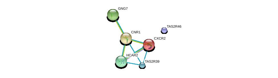 http://string-db.org/version_10/api/image/networkList?limit=0&targetmode=proteins&caller_identity=gene_cards&network_flavor=evidence&identifiers=9606.ENSP00000436450%0d%0a9606.ENSP00000358511%0d%0a9606.ENSP00000405095%0d%0a9606.ENSP00000371594%0d%0a9606.ENSP00000375066%0d%0a9606.ENSP00000319635%0d%0a