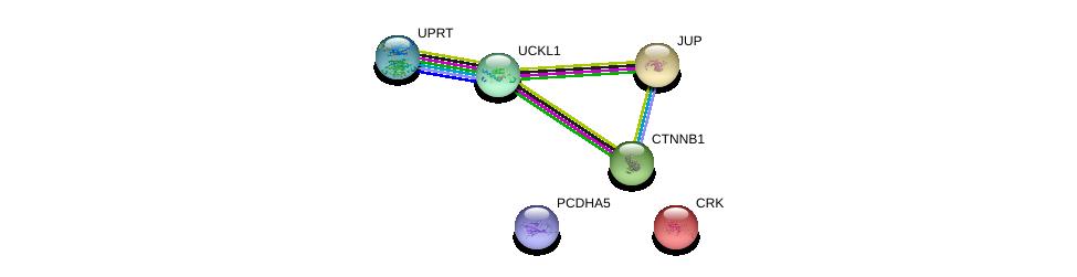 http://string-db.org/version_10/api/image/networkList?limit=0&targetmode=proteins&caller_identity=gene_cards&network_flavor=evidence&identifiers=9606.ENSP00000436557%0d%0a9606.ENSP00000300574%0d%0a9606.ENSP00000311113%0d%0a9606.ENSP00000362481%0d%0a9606.ENSP00000344456%0d%0a9606.ENSP00000346155%0d%0a
