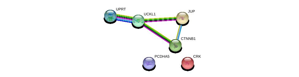 http://string-db.org/version_10/api/image/networkList?limit=0&targetmode=proteins&caller_identity=gene_cards&network_flavor=evidence&identifiers=9606.ENSP00000436557%0d%0a9606.ENSP00000300574%0d%0a9606.ENSP00000344456%0d%0a9606.ENSP00000346155%0d%0a9606.ENSP00000362481%0d%0a9606.ENSP00000311113%0d%0a
