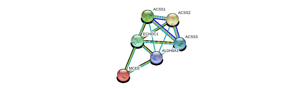 http://string-db.org/version_10/api/image/networkList?limit=0&targetmode=proteins&caller_identity=gene_cards&network_flavor=evidence&identifiers=9606.ENSP00000436585%0d%0a9606.ENSP00000449535%0d%0a9606.ENSP00000316924%0d%0a9606.ENSP00000253382%0d%0a9606.ENSP00000244217%0d%0a9606.ENSP00000450436%0d%0a