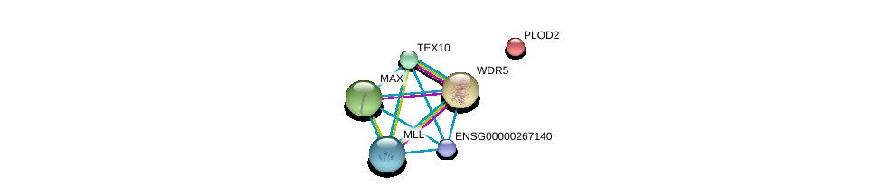 http://string-db.org/version_10/api/image/networkList?limit=0&targetmode=proteins&caller_identity=gene_cards&network_flavor=evidence&identifiers=9606.ENSP00000436786%0d%0a9606.ENSP00000351446%0d%0a9606.ENSP00000467041%0d%0a9606.ENSP00000351490%0d%0a9606.ENSP00000282903%0d%0a9606.ENSP00000364037%0d%0a