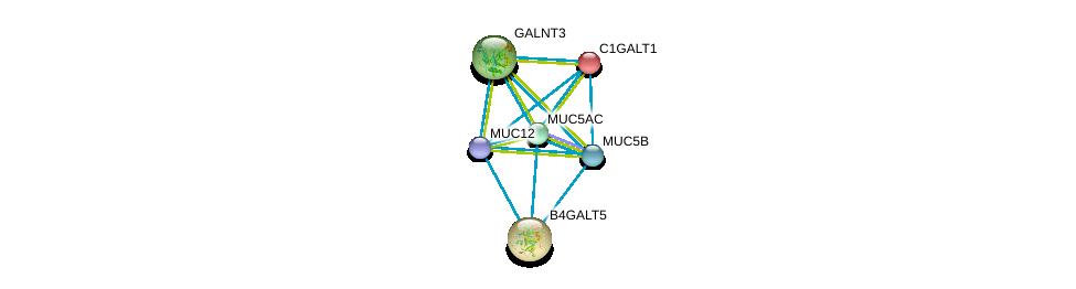 http://string-db.org/version_10/api/image/networkList?limit=0&targetmode=proteins&caller_identity=gene_cards&network_flavor=evidence&identifiers=9606.ENSP00000436812%0d%0a9606.ENSP00000376465%0d%0a9606.ENSP00000435591%0d%0a9606.ENSP00000441929%0d%0a9606.ENSP00000360776%0d%0a9606.ENSP00000223122%0d%0a