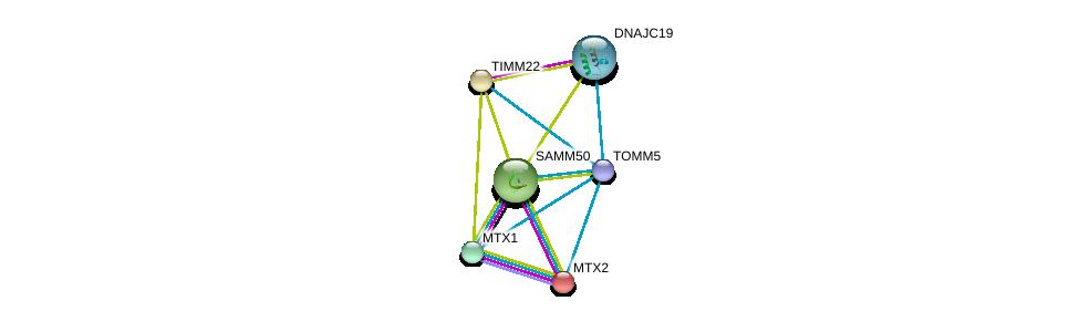 http://string-db.org/version_10/api/image/networkList?limit=0&targetmode=proteins&caller_identity=gene_cards&network_flavor=evidence&identifiers=9606.ENSP00000438204%0d%0a9606.ENSP00000357360%0d%0a9606.ENSP00000320236%0d%0a9606.ENSP00000249442%0d%0a9606.ENSP00000372005%0d%0a9606.ENSP00000345445%0d%0a