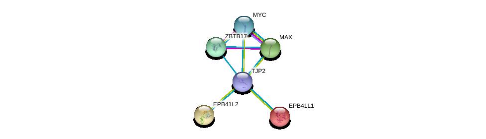 http://string-db.org/version_10/api/image/networkList?limit=0&targetmode=proteins&caller_identity=gene_cards&network_flavor=evidence&identifiers=9606.ENSP00000438262%0d%0a9606.ENSP00000351490%0d%0a9606.ENSP00000367207%0d%0a9606.ENSP00000364895%0d%0a9606.ENSP00000338481%0d%0a9606.ENSP00000337168%0d%0a