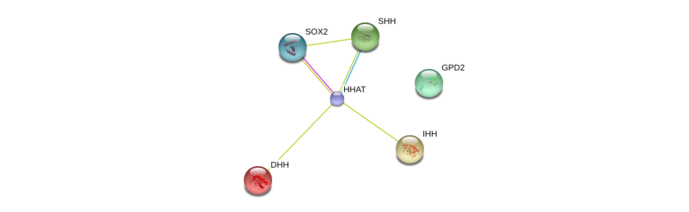 http://string-db.org/version_10/api/image/networkList?limit=0&targetmode=proteins&caller_identity=gene_cards&network_flavor=evidence&identifiers=9606.ENSP00000438468%0d%0a9606.ENSP00000297261%0d%0a9606.ENSP00000266991%0d%0a9606.ENSP00000295731%0d%0a9606.ENSP00000323588%0d%0a9606.ENSP00000308610%0d%0a
