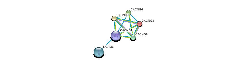 http://string-db.org/version_10/api/image/networkList?limit=0&targetmode=proteins&caller_identity=gene_cards&network_flavor=evidence&identifiers=9606.ENSP00000438949%0d%0a9606.ENSP00000318472%0d%0a9606.ENSP00000270458%0d%0a9606.ENSP00000252729%0d%0a9606.ENSP00000222212%0d%0a9606.ENSP00000005284%0d%0a